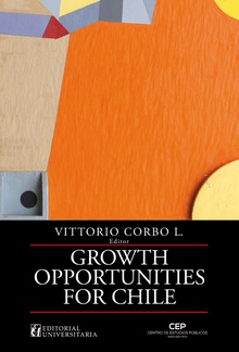 Growth Opportinities for Chile