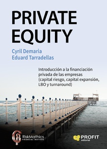 Private Equity. Ebook