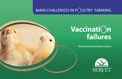 Main challenges in poultry farming. Vaccination failures