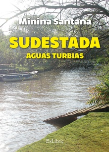 Sudestada. Aguas turbias